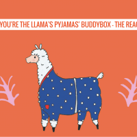 Our 'You're The Llamas Pjyamas' BuddyBox - The Reaction