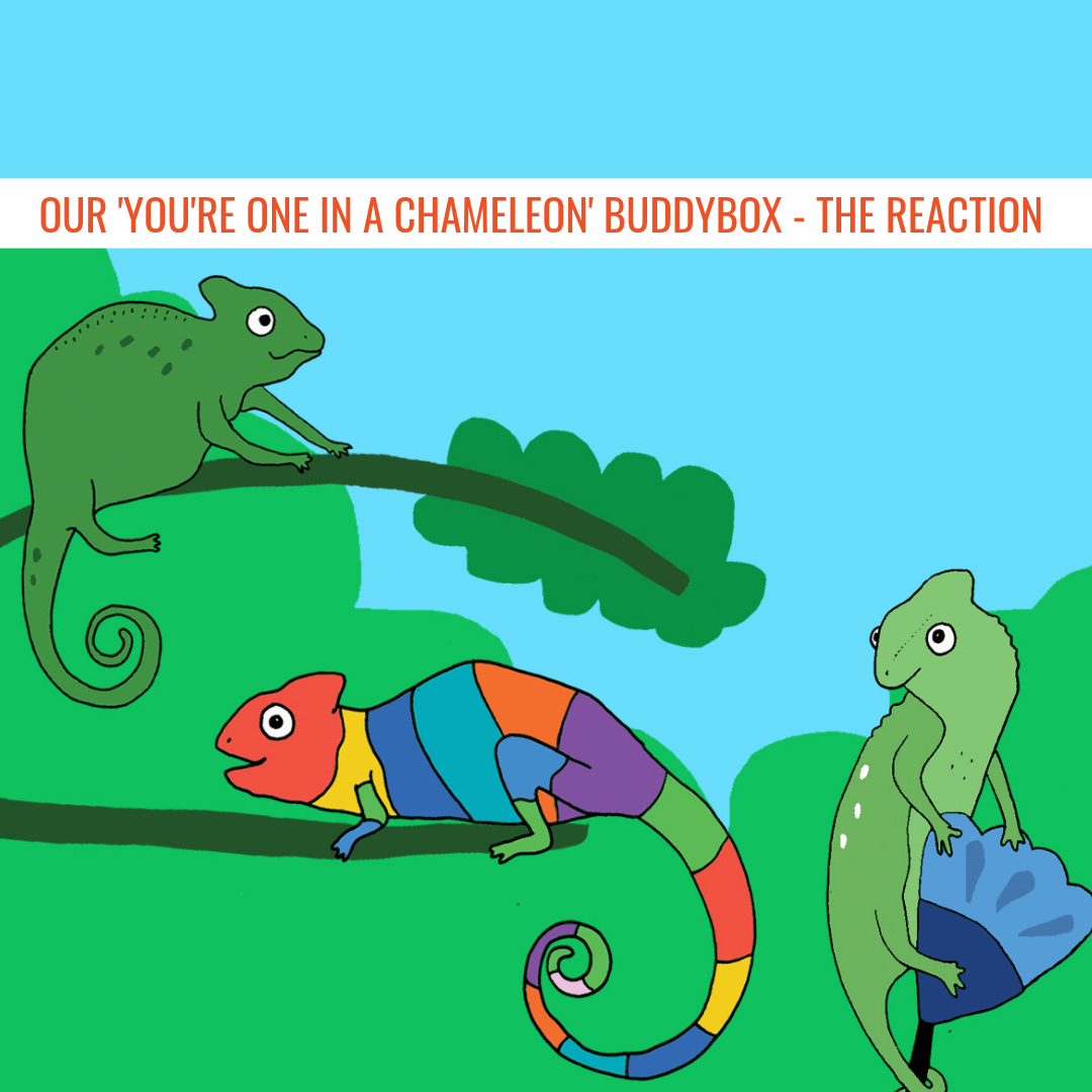 Our 'You're One In A Chameleon' BuddyBox - The Reaction
