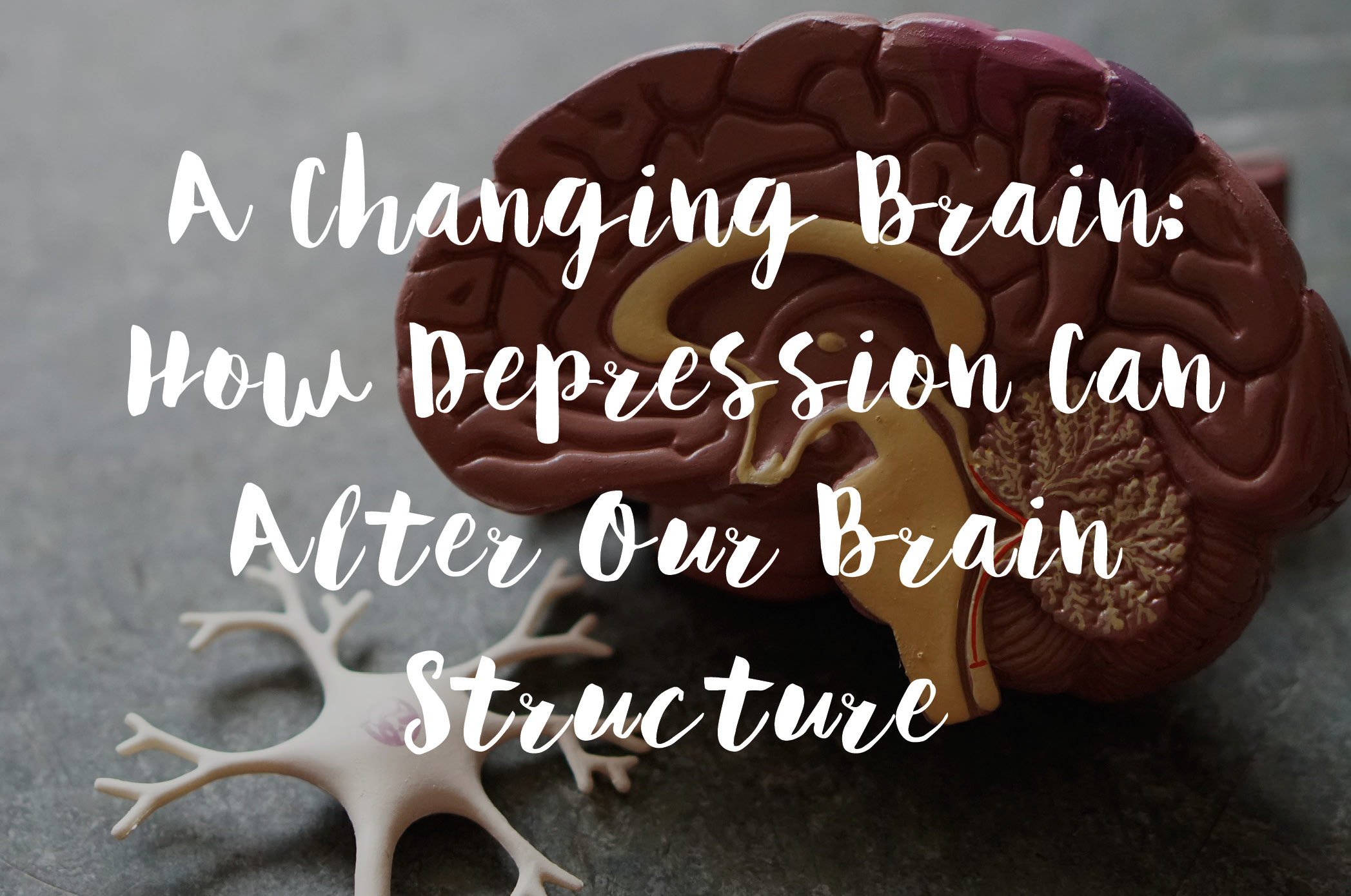 A Changing Brain: How Depression Can Alter Our Brain Structure